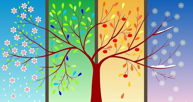 seasons-of-life-tree